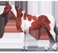 Image Paint horse