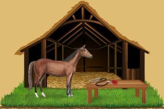 Occupez-vous des chevaux appartenant aux autres éleveurs dans votre centre équestre et faites-les progresser continuellement.